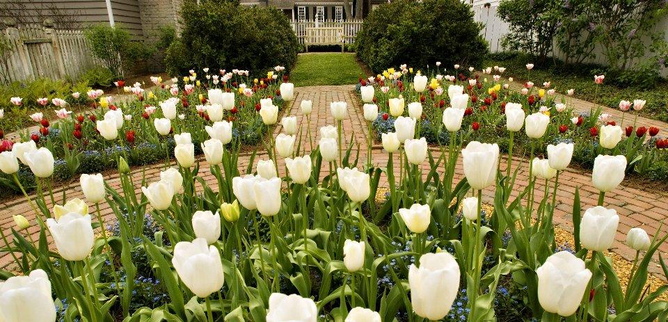 Historic-Gardens-1
