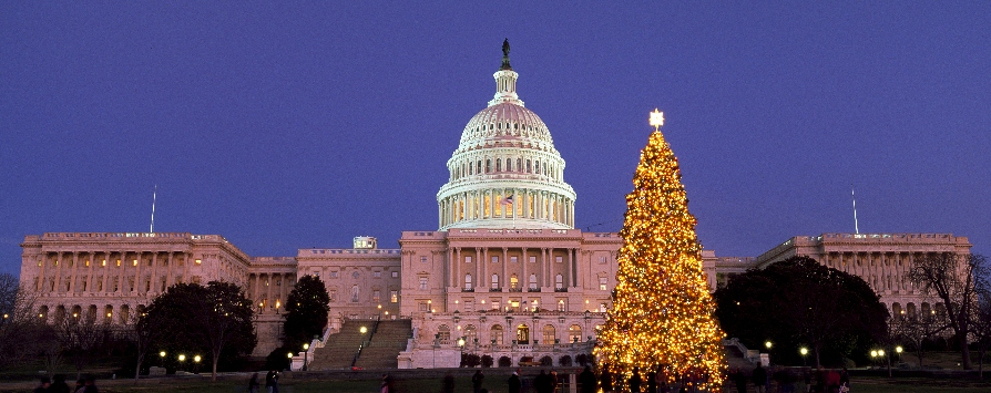 US-CAPITOL-CHRISTMAS-TREE